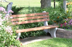 Bench with pressure treated lumber.